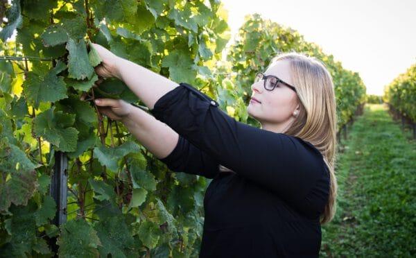 moderierte Online-Weinprobe mit Jungwinzerin Jana Kopp per Livestream